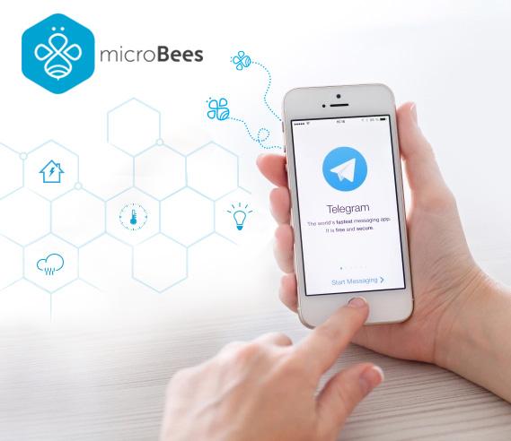 MicroBees & Telegram